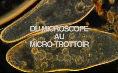 «Du microscope au micro-trottoir» – Le film des Apprentis Journalistes 2015-2016